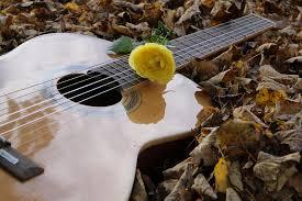 serenata violão